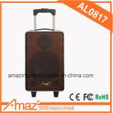 Aktiver Typ PA-nachladbarer Hinterverkleidungs-Laufkatze-Verstärker-Lautsprecher mit drahtlosem Mic