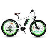アルミニウム脂肪質のタイヤセリウムEn15194のバイクが付いている電気山浜の自転車