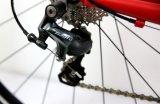 bicicleta da estrada do frame da liga 700c, competindo a bicicleta (RD20)