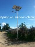 30W Ce&RoHS Calle luz LED Solar