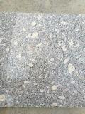 壁/床のためのG375中国のピンクの花こう岩のタイル