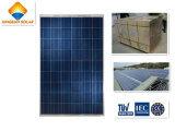 Poli comitato solare diplomato Ce 300W per il modulo solare