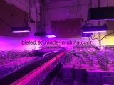 Potencia 400W de Ligting del crecimiento de la horticultura con 50000 horas de vida útil