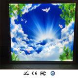 Iluminación cuadrada del techo del sentido LED Panellight del cielo/de la nube