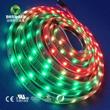 Striscia di RGB LED di colore completo di DMX Digitahi Ws2812/Ws2811