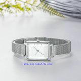 Orologi di lusso di vendita caldi di affari della vigilanza (WY-17034B)