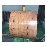 PPGI/PPGL, bobina de aço da cor, Pre-Painted a bobina de aço