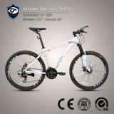De 24-snelheid van Tourney van de fiets de Fiets van de Berg van de Legering van het Aluminium