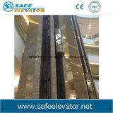 Type ascenseur sans engrenages de passager d'observation