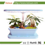 A luz de LED Hosehold Keisue Micro Farm cor azul