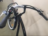 세륨 En15194 26inch 바닷가 전기 자전거