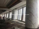 Стены натурального мрамора плитки для оболочка