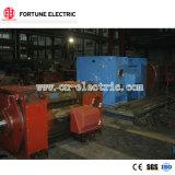 中国Z4シリーズ220V-660V DCモーター