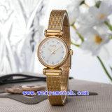 La vigilanza dell'acciaio inossidabile personalizza gli orologi casuali (WY-017A)