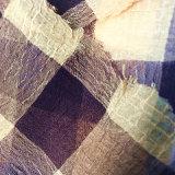 grande mousseline de soie cationique du plaid 50d*68d pour la robe de vêtement d'écharpe
