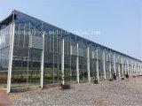 industrieller Fenster-Ventilator-axialer Flügelgebläse-Absaugventilator der Wand-45000m3/H
