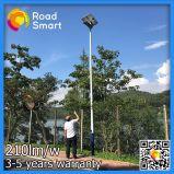 Réverbère solaire extérieur complet de DEL avec à télécommande