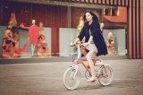 Tsinova 2017の電気自転車の充満バイクのE自転車の20インチアルミニウムフレーム