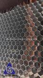 Âme en nid d'abeilles en aluminium de haute résistance d'usine pour l'usage de porte