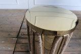 Roestvrij staal van de Kleur van het plateren het Gouden met de Kabel van de Hennep om de ZijLijst van de Koffietafel