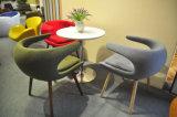 최신 판매 섬유 유리 프레임 여가 의자 (EC-027)