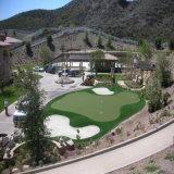Erba artificiale di verde mettente di golf professionale