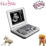 Preiswertester Preis-Laptop-Ultraschall für Veterinärtiere