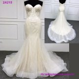 Champagne는 신부 드레스 결혼 예복을 착색했다
