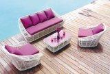 Sofá ao ar livre da mobília da mobília ajustada nova do Rattan do sofá do balcão do projeto (TG-040)