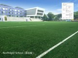 Football Football Artificial Grass (c50)