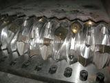 قصبة الرمح وحيد يستعصي متحف مهدورة بلاستيكيّة