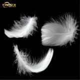 2-4cm de color blanco edredones de plumas para materiales de relleno de almohadas