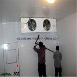 Entreposage au froid, chambre froide, surgélateur, pièces de réfrigération pour la viande