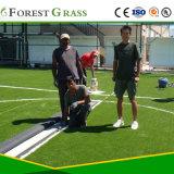 La hierba verde/de campo de fútbol de césped artificial para el campo de deportes varios