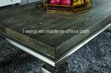 Vidrio Tempered o vector de cena superior de madera imitado del acero inoxidable