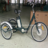 "250W 24 "" Electric Three Wheel E Bike Adult Big Tricycle for Elder with EEC Approval for Sale"