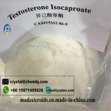 Het natuurlijke Mannelijke Steroid Testosteron Isocaproate van het Geslacht voor de Groei 15262-86-9 van de Spier