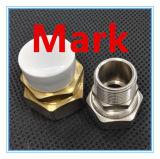 Ajustage de précision en laiton d'amorçage de TNP pour la pipe de Pex-Al-Pex
