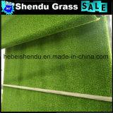 二重および堅い裏付け30mmの景色の草のカーペット
