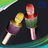 가정 당을%s LED Karaoke 마이크 Bluetooth 무선 스피커