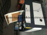 Estaca do laser do CO2 da qualidade e da elevada precisão de Stalbe e máquina de gravura