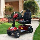 セリウムEn12184が付いている24V 800W 4の車輪の移動性のスクーター: 2009 Dm501
