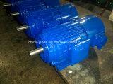 motore elettrico di dovere dell'invertitore di 1HP-270HP Tefc (IP54)