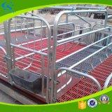 Landwirtschaft des galvanisierten Schwangerschaft-Schwein-werfenden Betts