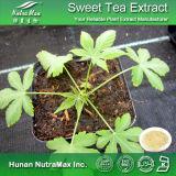 Выдержка чая 100% естественная сладостная (70% Rubusosides)