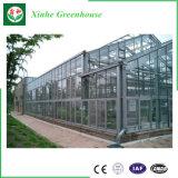 Grande estufa agricultural do vidro da estufa da Multi-Extensão