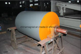 隔離された強磁性材料または砂糖または木片の生物量の発電所のためのRctの磁気プーリーかドラムまたはローラー
