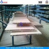 Chaîne de production en plastique de panneau du profil Machine/PVC de porte de PVC