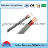 Câble à plat isolé par PVC de jumeau et de terre