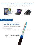 Câble LAN De cuivre à grande vitesse de réseau de ftp CAT6 CCA